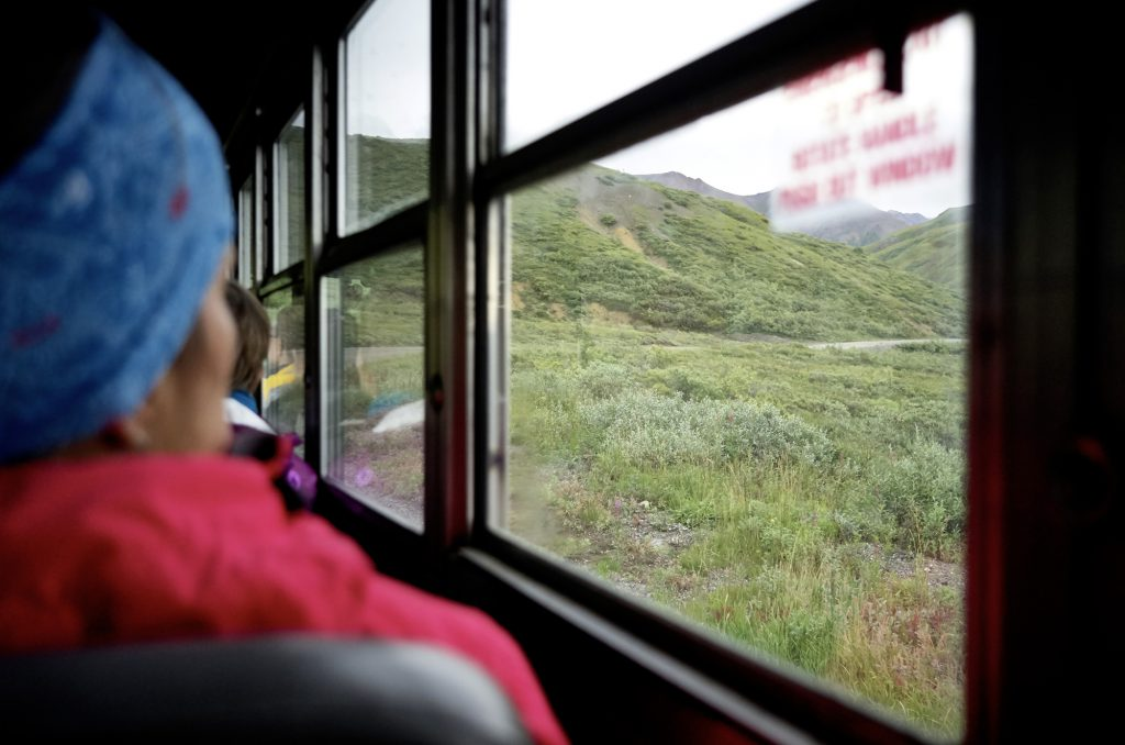 Yukon River Kanutour - Blick aus dem Fenster eines Busses. Draußen: die Landschaft des Denali Nationalparks.
