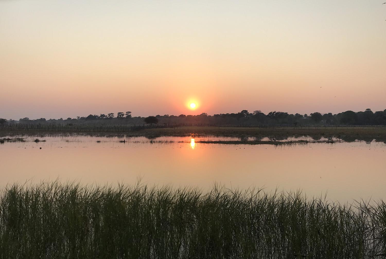Sonnenaufgang am Ufer der Safari Island Lodge im Okavango Delta, Botswana