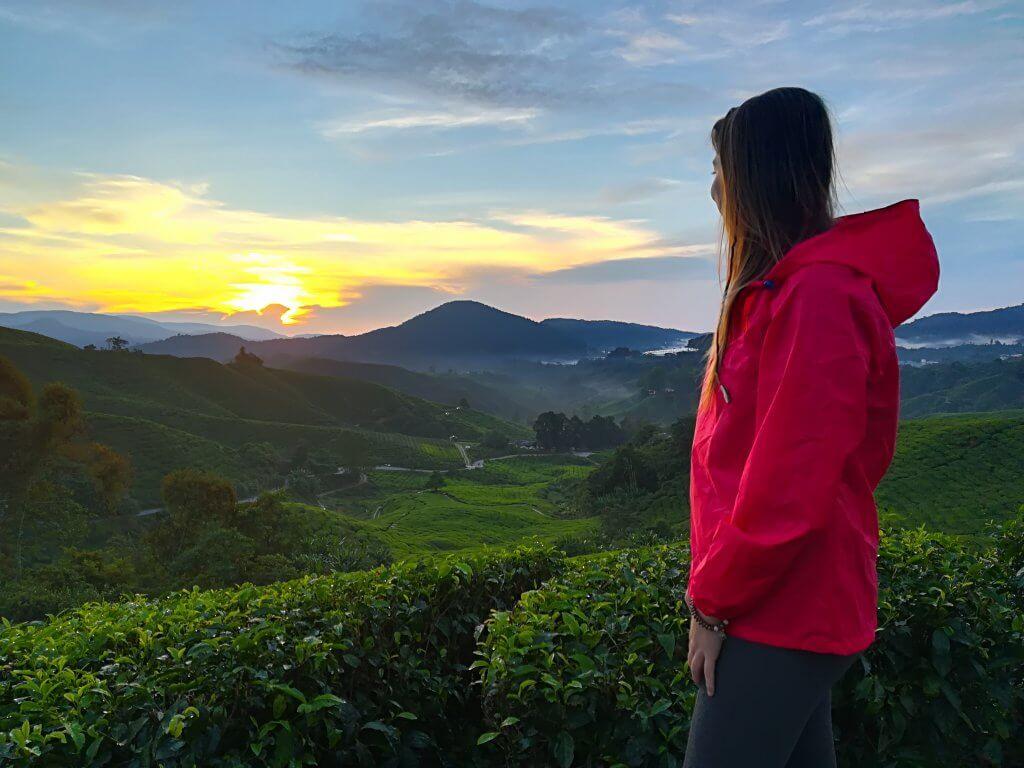Sarah genießt den Sonnenaufgang an den Cameron Highlands in Malaysia.