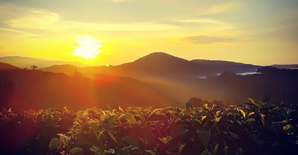 Sonnenaufgang an den Cameron Highlands in Malaysia.