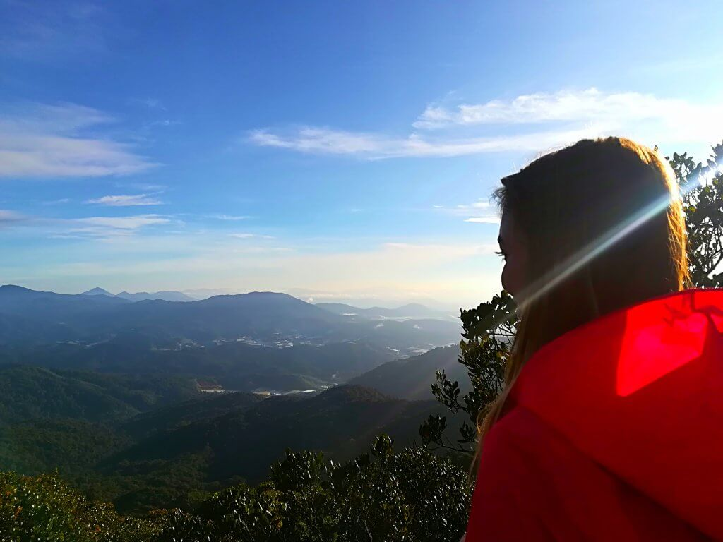 Sarah genießt den Ausblick vom Aussichtsturm Mossy Forest.