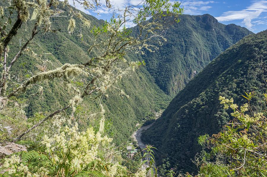 Blick von einem Berg aus auf den Urwald nahe Machu Picchu in Peru.