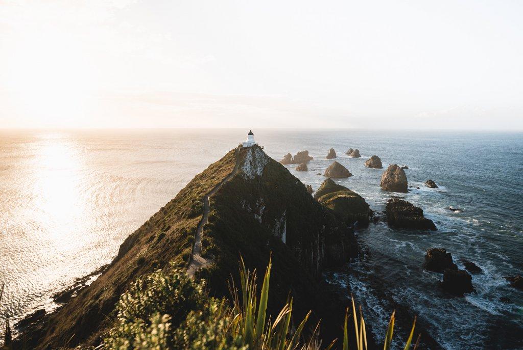 Roadtrip Neuseeland: Nugget Point Lighthouse im goldenen Licht der Sonne.