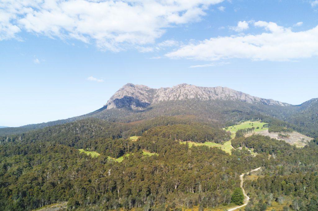 Blick auf die Umgebung und Wildnis Tasmaniens. Im Vordergrund Wald, im Hintergrund Gebirge.