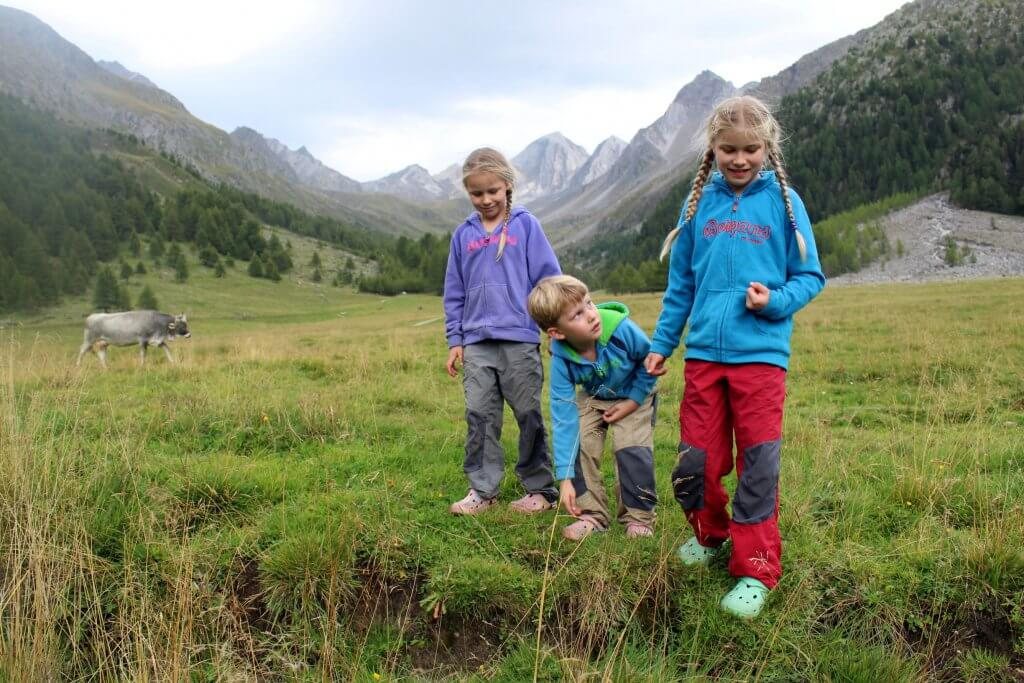 Die drei Kinder finden Frösche auf der Wiese