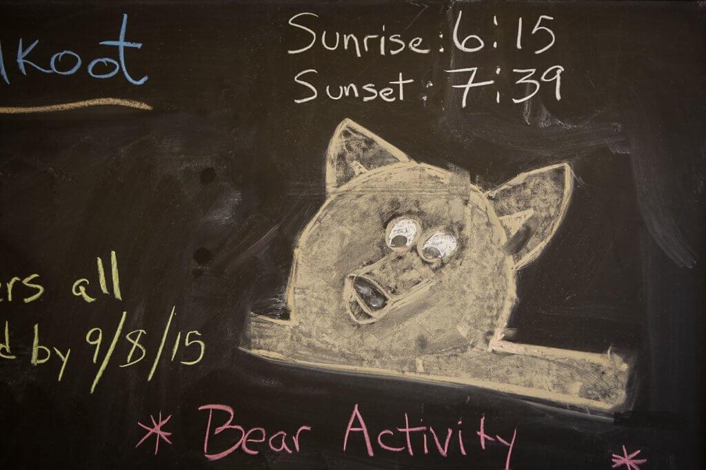 Bären sind auf dem Chilkoot Trail nichts ungewöhnliches.