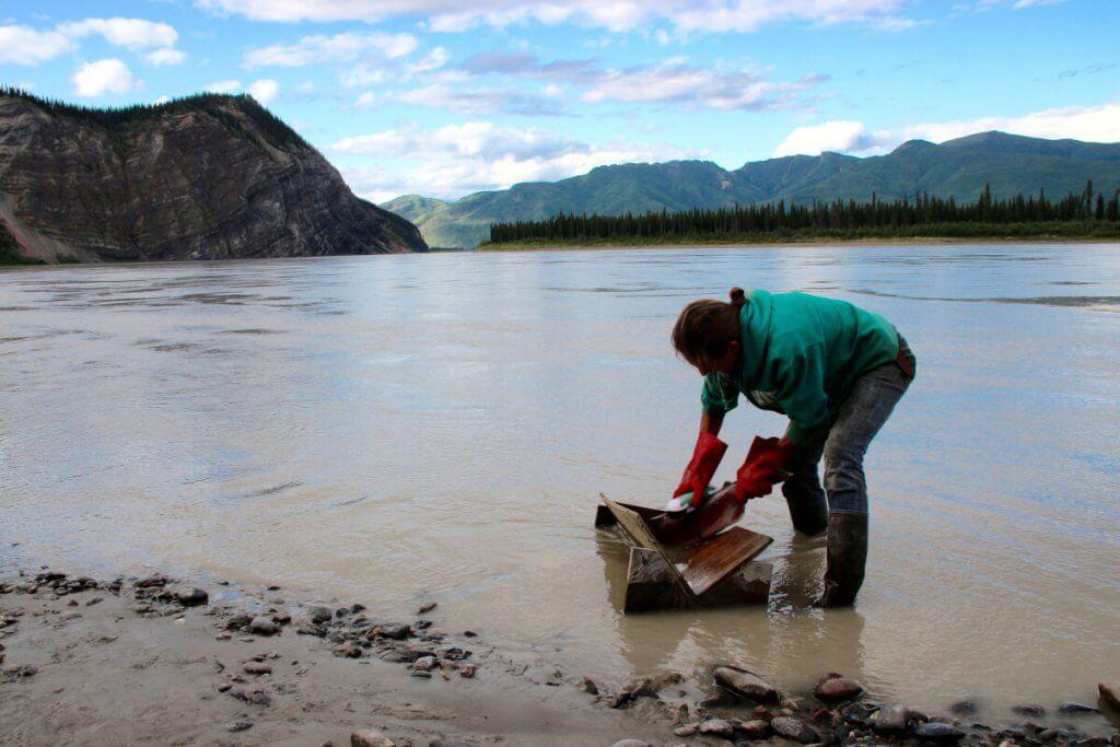 Denise bürstet die Fische im Fluss ab, bevor Andy sie filetiert.