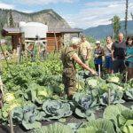 Yukon River Kanutour - Andy zeigt der Reisegruppe seinen Gemuesegarten.