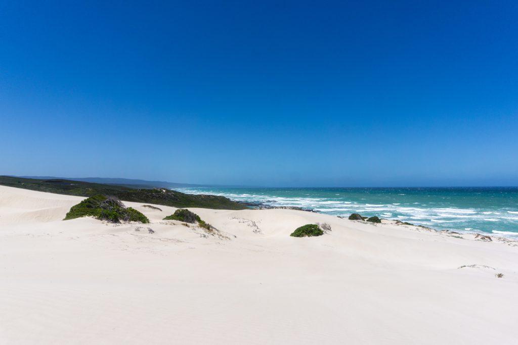 Garden Route Südafrika - Ein Weg im De Hoop Nature Reserve führt direkt zum Meer.