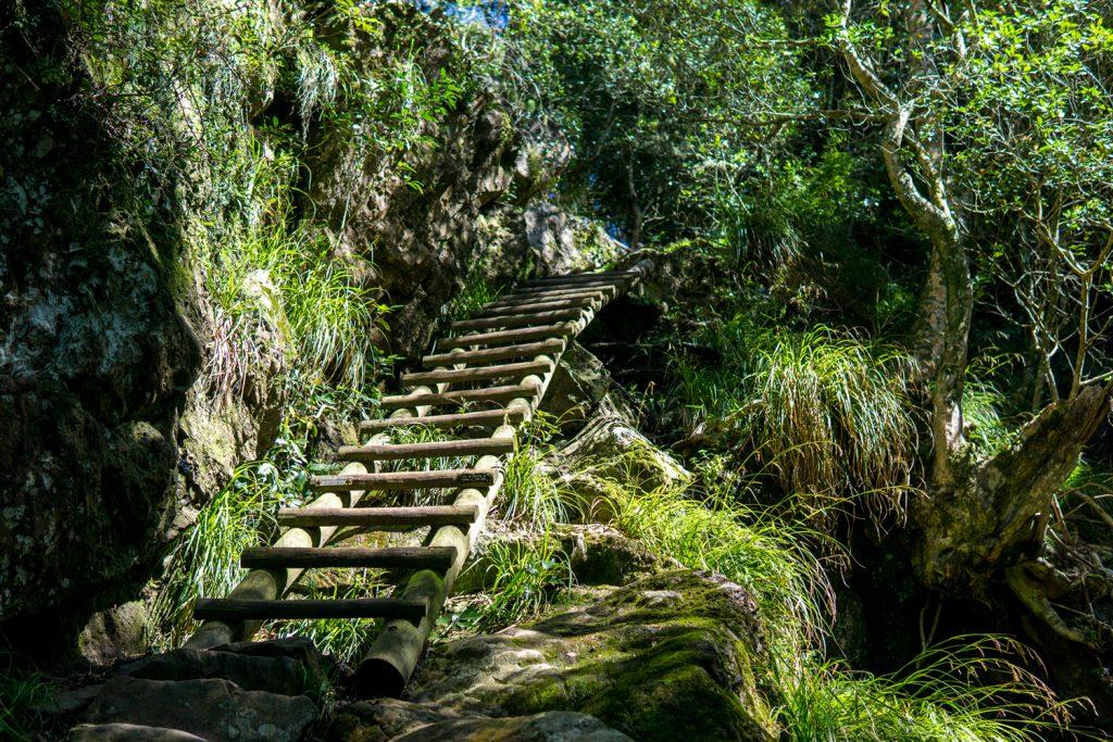 Garden Route Südafrika - Der Aufstieg zum Tafelberg über den Smuts Track dauert ca. drei bis vier Stunden.