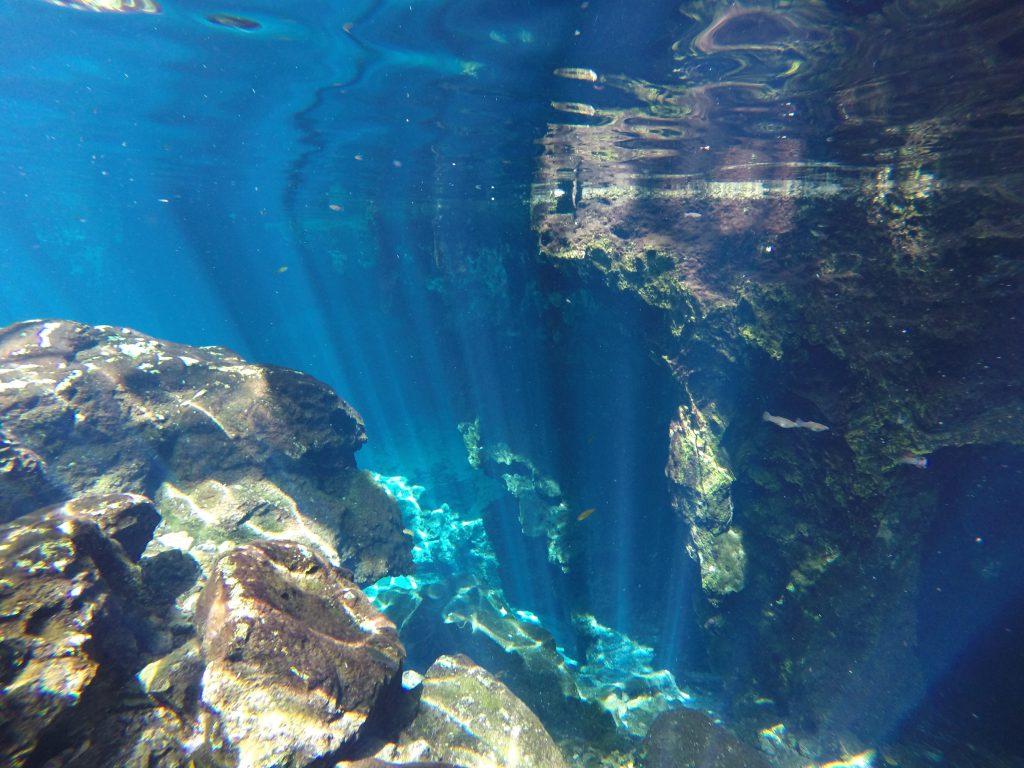Roadtrip Yucatan - Unterwasseraufnahme in einer Cenote in Mexiko. Cenoten sind traumhafte, mit Wasser gefüllte Höhlen bzw. Löcher.