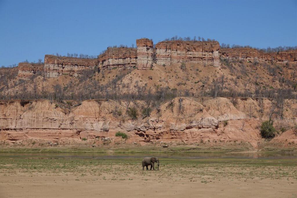 Roadtrip Afrika - Elefant vor den hohen Klippen im Gonarezhou Nationalpark.