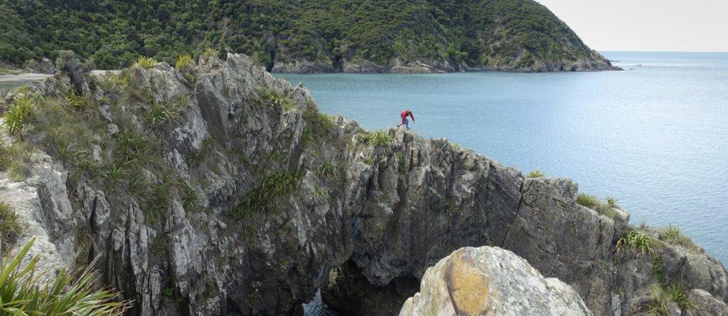 Work and Travel Neuseeland - Tatonka Trekkin' Crew Titelbild.