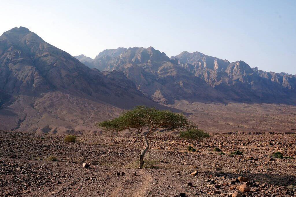 Trekken auf dem Jordan Trail - Auf dem Weg durch das Wadi Malaga zwischen Dana und Petra.