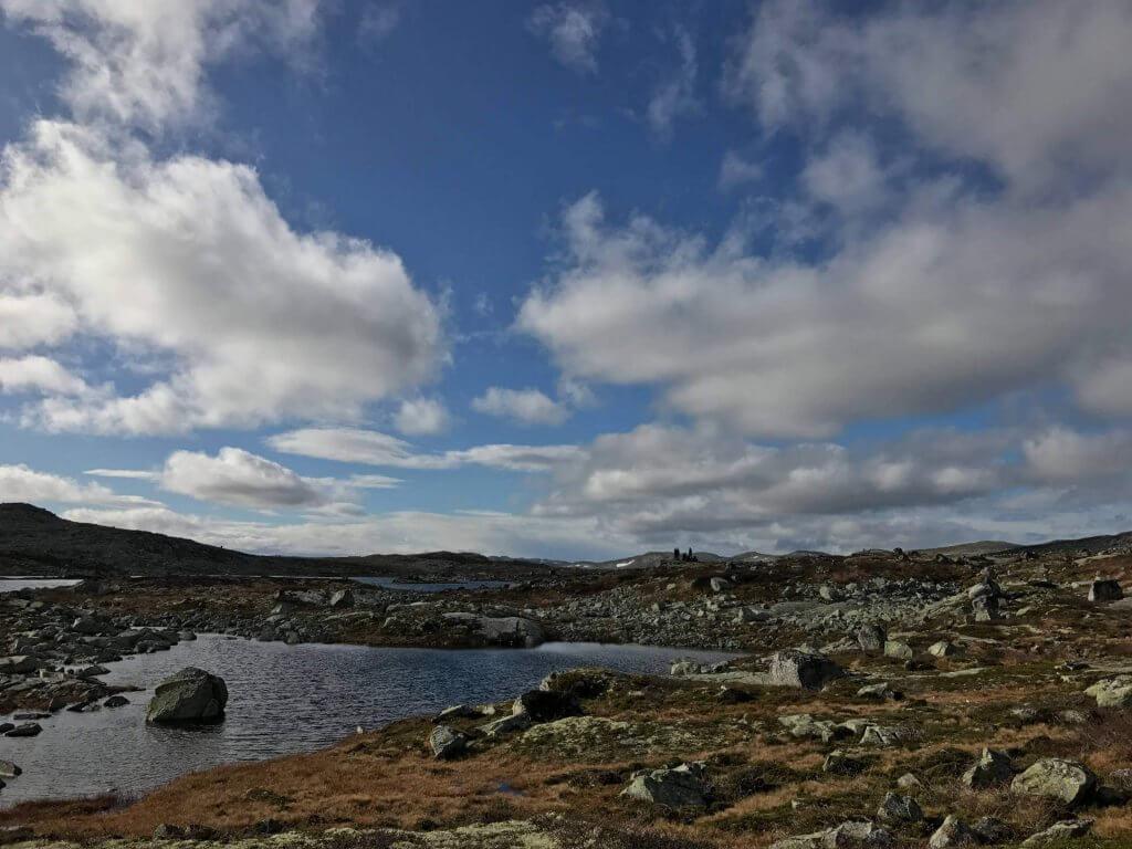 Trekkingtour Norwegen - Wassertümpel in der Hochebene Hardangervidda