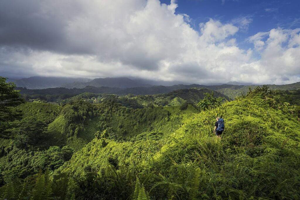 Katrin umgeben von den saftig grünen Makahela Bergen.
